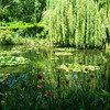 Monet's House in Giverny 8