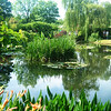 Monet's House in Giverny 6