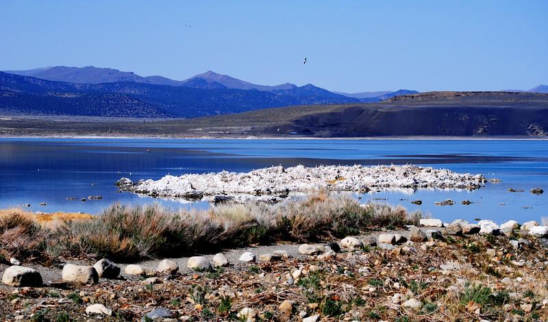 Mono Lake CA 3