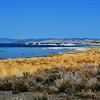 Mono Lake CA 4