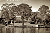 WPP2380  Lake Side Living   Sepia