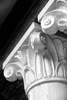 "WPP1224  ""Decorative Column on Rollins Building""  B&W, vertical"