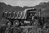 Cane Hauling Truck...