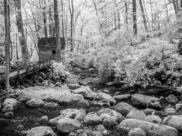 Alfred Reagan Tub Mill -  Roaring Fork Motor Trail -  The Great Smoky Mountains National Park