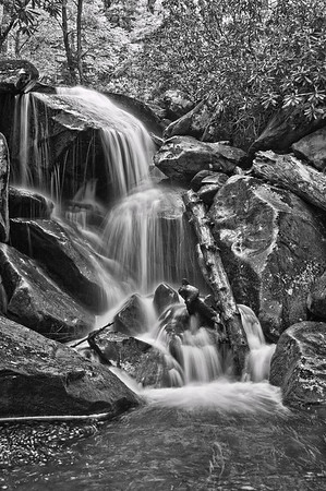Along the trail to Ramsey Cascades -  The Great Smoky Mountains National Park