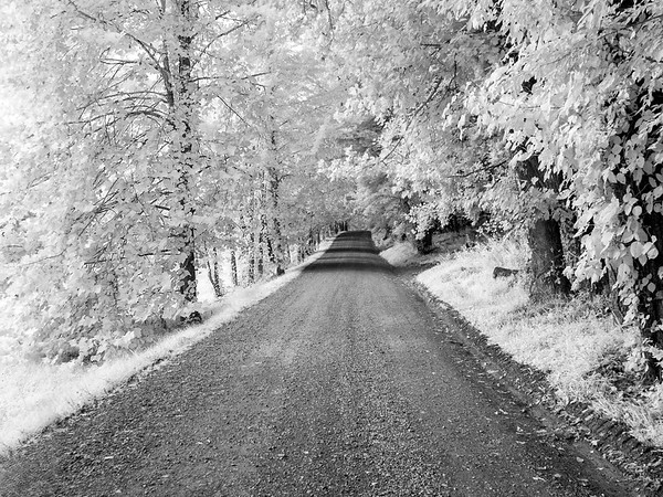Hyatt Lane  - Cades Cove -  The Great Smoky Mountains National Park