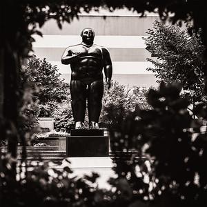 """Fernando Botero's """"Adam"""" framed by  vegetation."""