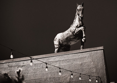 A metal horse sculpture on top of a building in Portland, Oregon.