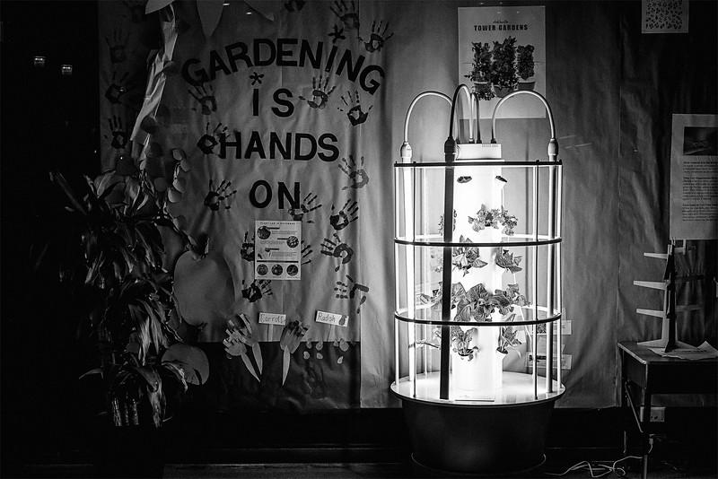 Gardening Is Hands On