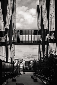 UW Medicine Building with Skybridge