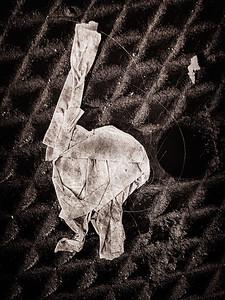 Paper Creature
