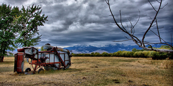 Antique combine harvester at Harrison.