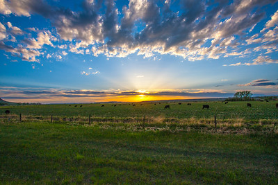 Sunset taken from Highway 200 near Simms.