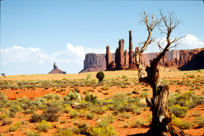 Yei Bi Chei, Monument Valley, Navajo Tribal Park