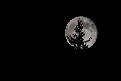_MG_9244 moon