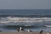 20110429_Moonlight_Beach_11