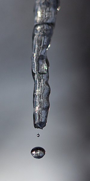 Dripping Icicle<br /> Monroe, CT<br /> Image #:3342