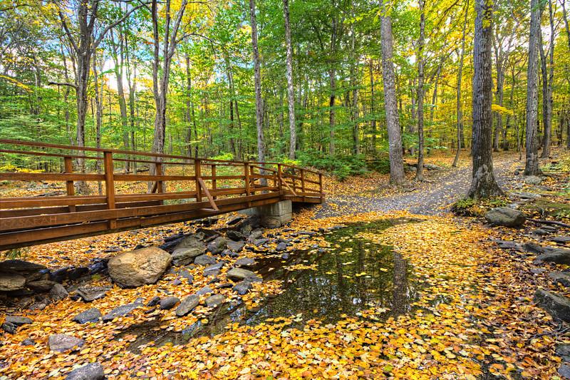 Wolfe Park<br /> Monroe,CT<br /> Image#:9379