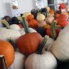 October not far away!