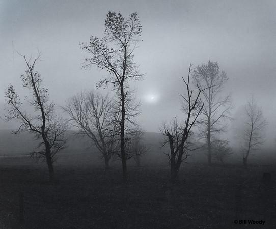 Daybreak-Edit