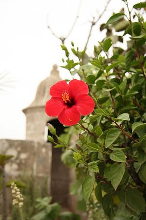 Rampart garden - Oudaias Kasbah, Rabat