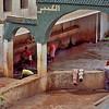 Village wash day