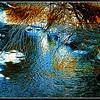 Rusty River