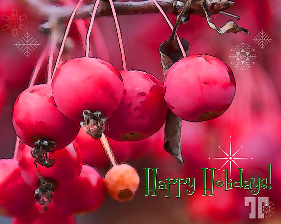 Happy Holidays and Merry Christmas!