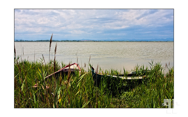 Posted: May 25, 2012<br /> <br /> Boats by the lake Provence France, Provence