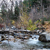 Stream In The Mountains<br /> <br /> Salt Lake City, Utah