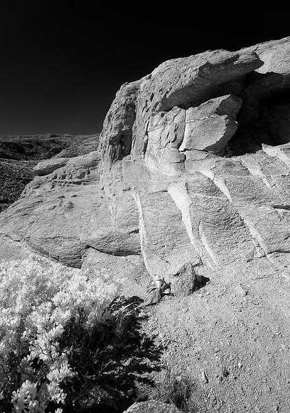 Stone Claw
