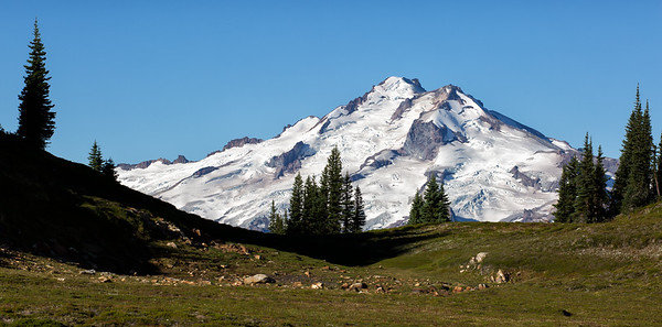 Plummer Mountain meadows