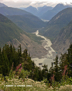 VIEW OF THE SALMON RIVER FROM A POINT NEAR ITS SOURCE, THE MIGHTY SALMON GLACIER IN BC