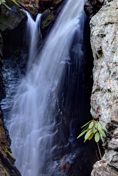 Raven Cliff Falls.