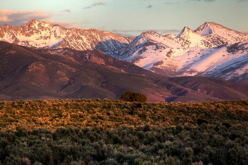 Ruby Mountain Sunset 2