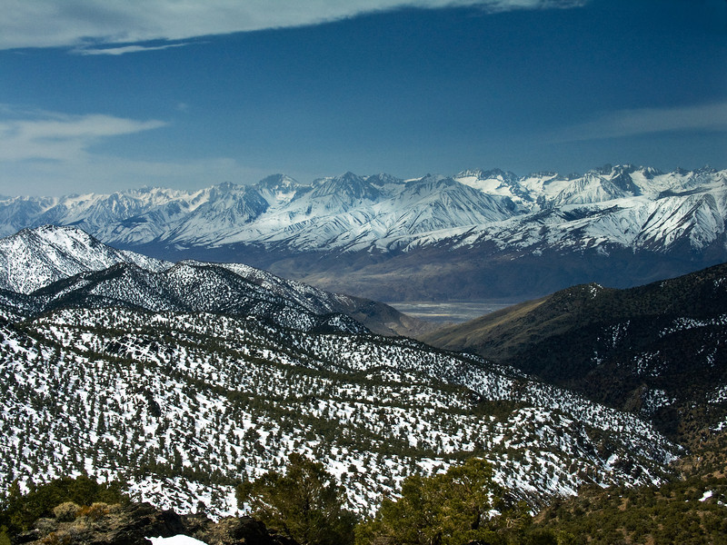 Eastern Sierras from the White Mountains 6