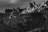 Castle Crags State Park Sunset 4 B&W