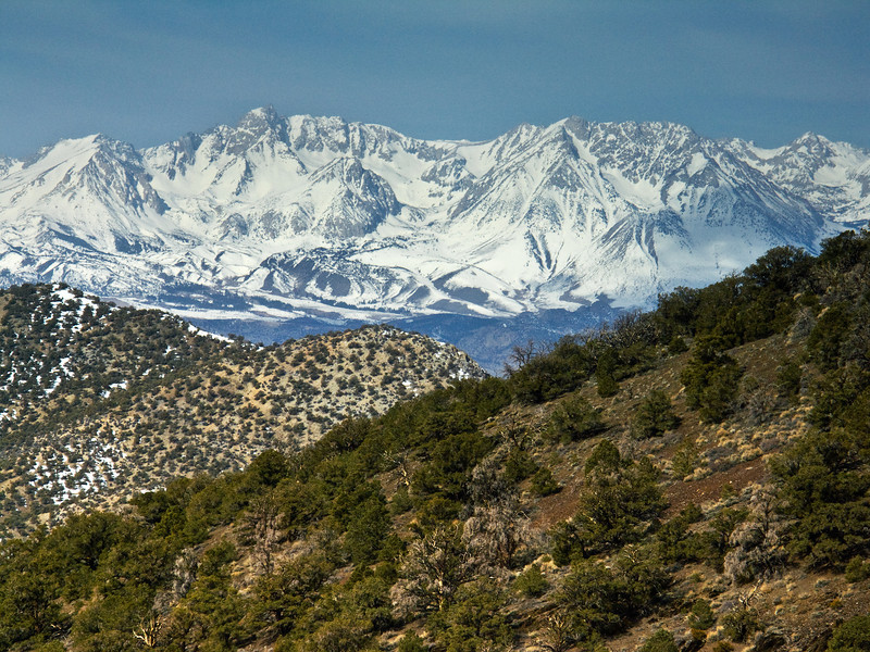 Eastern Sierras from the White Mountains 2
