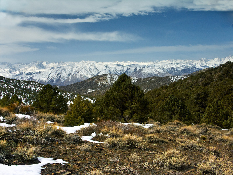 Eastern Sierras from the White Mountains