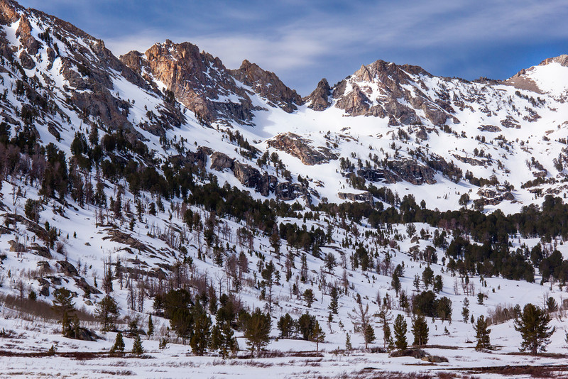 Peaks over Lamoille Canyon