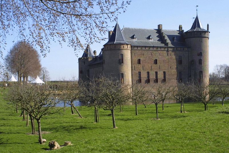 The castle with the orchard of plum trees