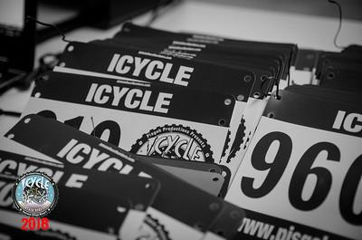 2018 Icycle