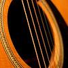 Seagull Acoustic Guitar