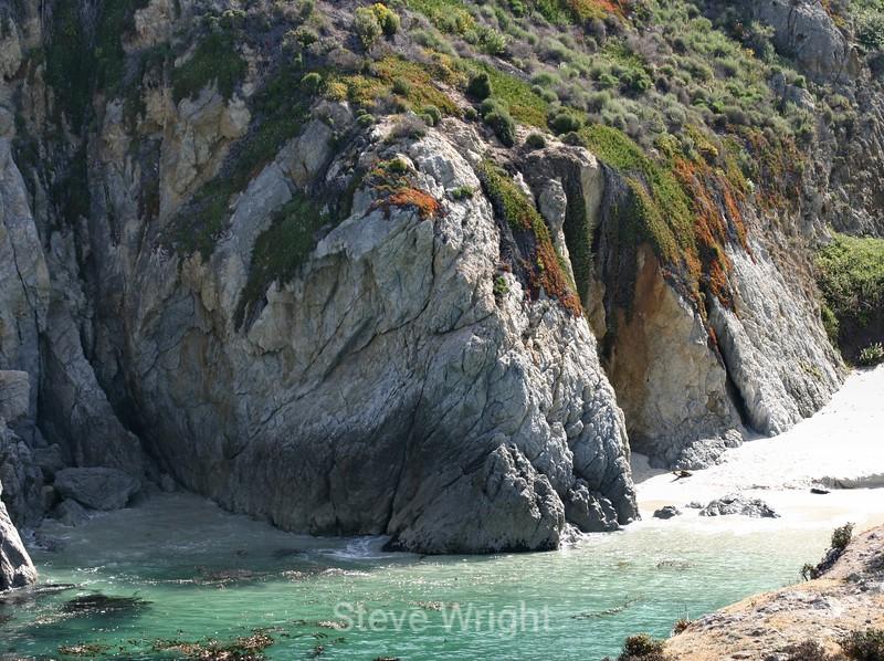 Point Lobos (46) D
