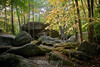 Thunder Rocks - Allegany State Park (80)