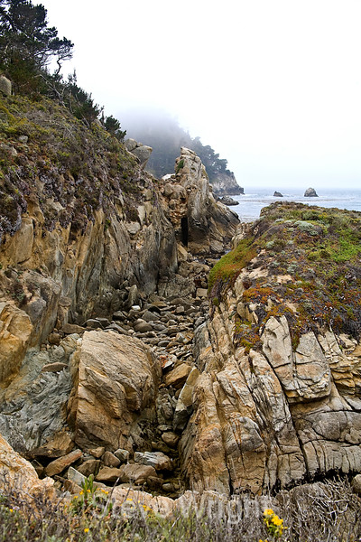 Bluefish Cove - Point Lobos (3)