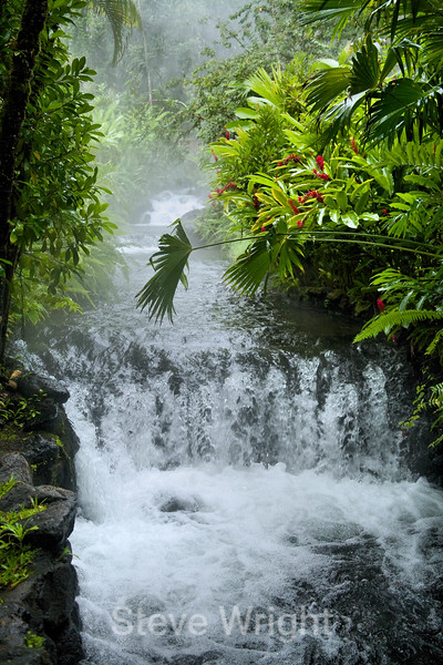 Tabacon Hot Springs - Costa Rica (56) D