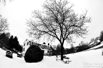 Snowy Concave
