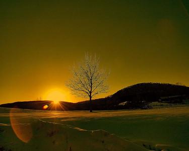A Glowing Sunset