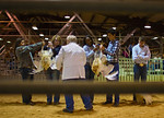 Future  Farmers Of America -The Turkey Competition -2011